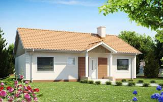 Фото одноэтажных домов с двускатной крышей