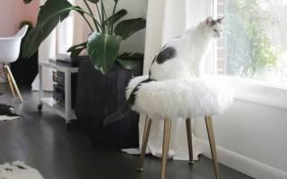 Лёгкий декор для комнаты своими руками