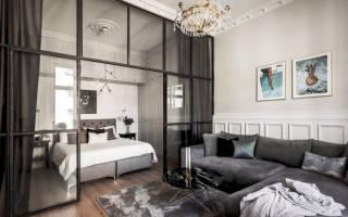 Дизайн гостиной с зоной спальни