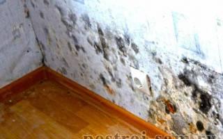 Потеют стены в доме что делать