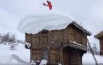Приспособление для очистки крыши от снега